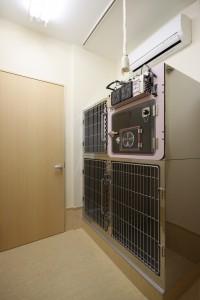 9入院室(犬)